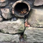 Nooks and crannies found by a child